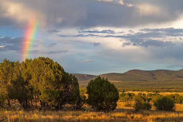 Rainbow-8_7d1__100916
