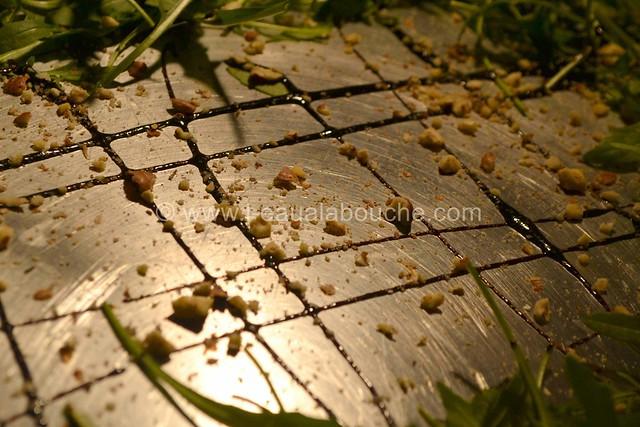 Thon à l'Unilatérale & St.Jacques Lardées © Ana Luthi Tous droits réservés 007
