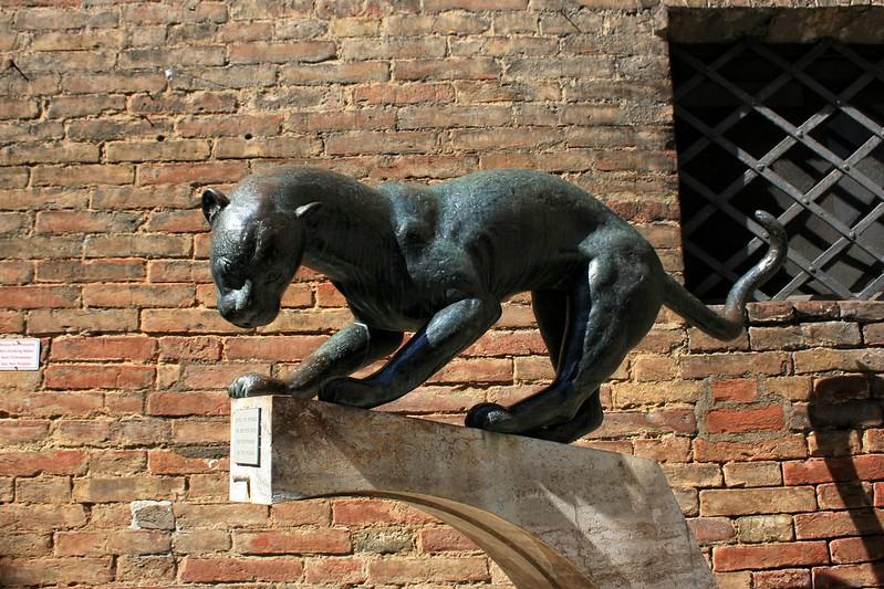 Panther, Siena