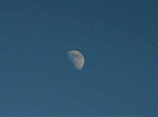 Moon 12.08 (3)