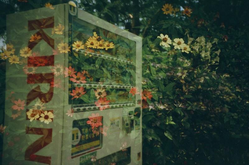 【多重露光】花と自動販売機