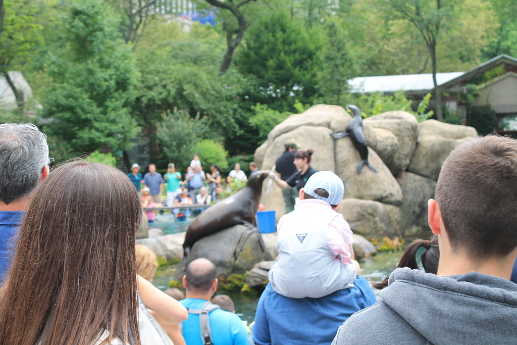 Central Park Zoo (118)