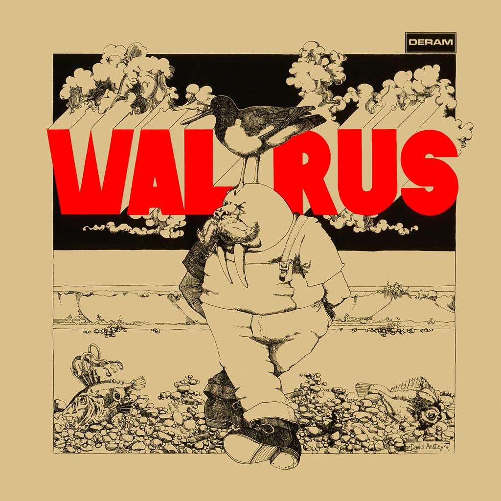 Walrus - Walrus