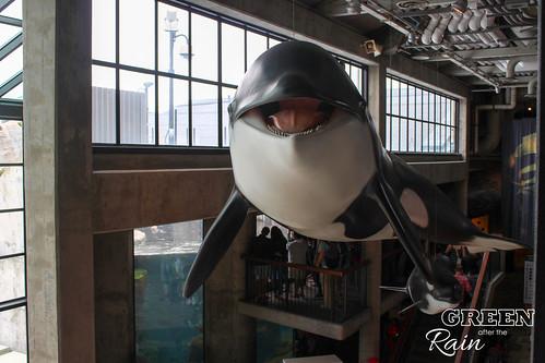160703f Monterey Bay Aquarium _036