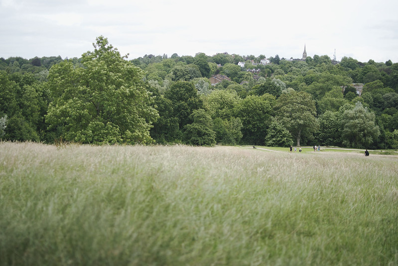 hampstead heath 7