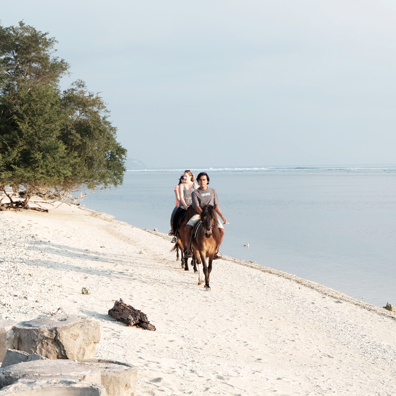 horseback riding on gili island