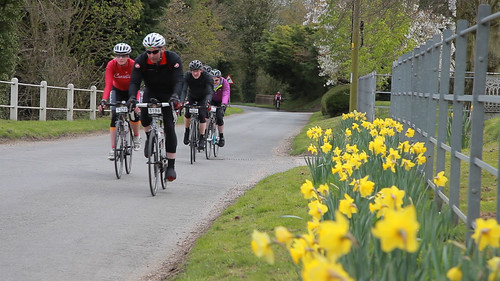 Wiggle Spring Saddle Sportive 2015 Photos