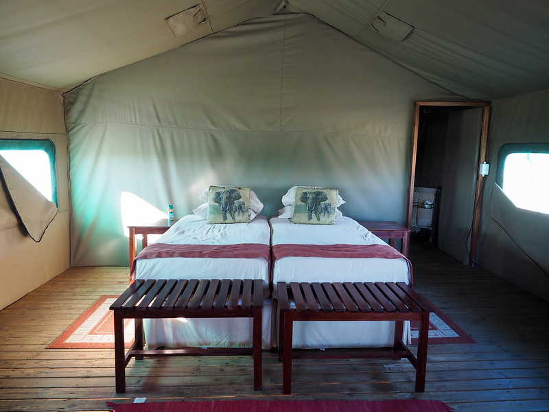 Tent at Elephant Sands in Botswana