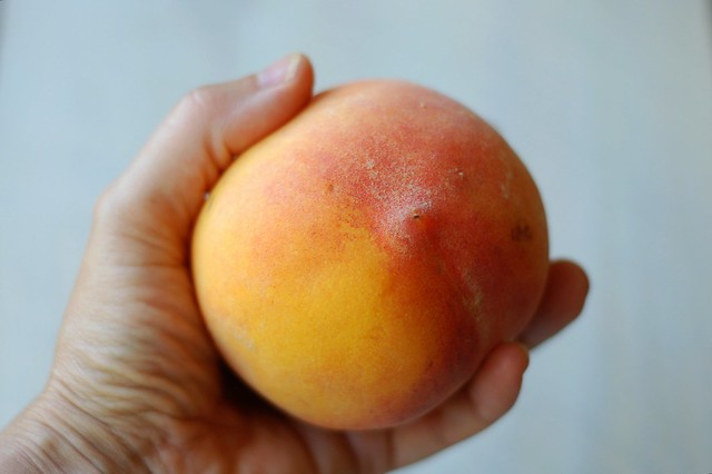 A fresh, ripe peach by Eve Fox, the Garden of Eating, copyright 2016