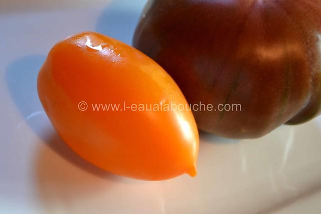 Tomates Multicolores aux Oignons Nouveaux & Graines © Ana Luthi Tous droits réservés 04