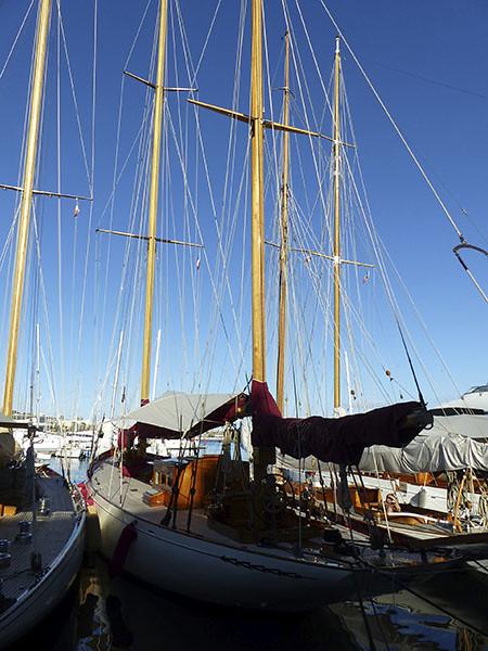 port de Cannes et mâts