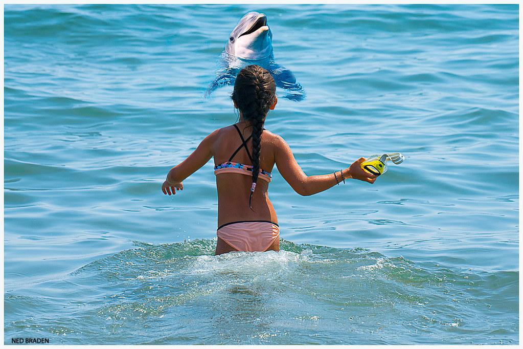 la fillette et le dauphin  28752794381_46a350c117_b